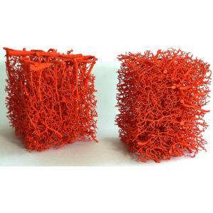 3D-mouse-brain-vasculature2