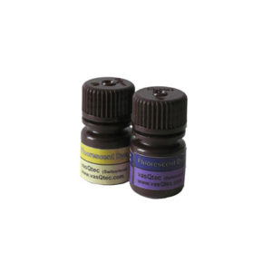 vasQtec-Fluorescent-Dye2